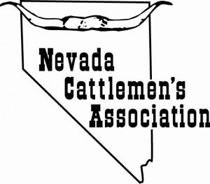 NCA_logo-300x263
